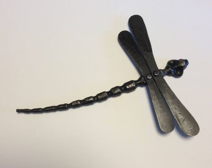 Forged Iron Dragonfly