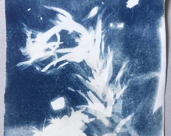 Cyanotype - 2s