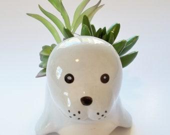 White Sea Otter Succulent Faux Arrangement in Ceramic Planter Featuring 3 Succulents Hostess Gift, Desk, Home, Office, Dorm or Shelf Decor