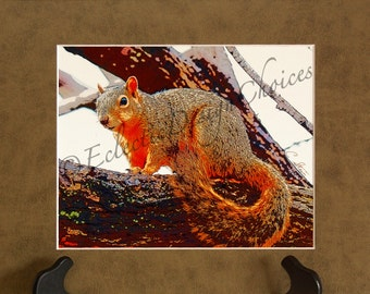 Squirrel in a Tree Matted Altered Photo Print, Digital Squirrel Photographic Art, Woodland Home Decor