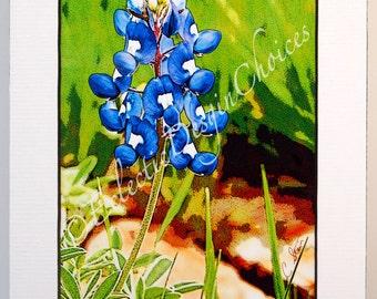 Photographic Art Bluebonnet Print, Texas Bluebonnet Botanical Art, Wildflower Matted Home Decor