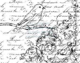 Instant Download Digital Stamp Image Bird Flourish and Script Collage