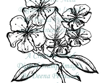 INSTANT DOWNLOAD Digital Stamp Image Pear Tree BLOSSOMS