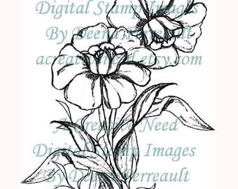 INSTANT DOWNLOAD Digital Stamp Image DAFFODILS