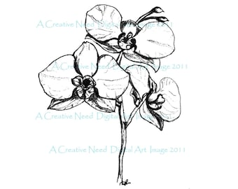 INSTANT Download ORCHIDS Digital Art Stamp Image for Scrapbooking, Cards, Mixed Media Art
