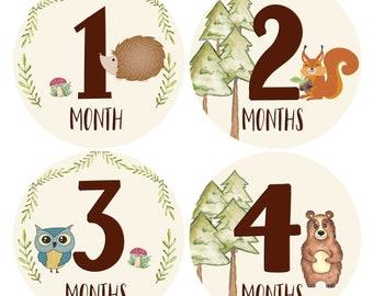 Baby Monthly Stickers Set of 24 Unisex Safari Newborn Monthly Milestones Zoo Animals Baby Milestone Stickers Month Stickers for Baby Boy Gender Neutral Jungle Newborn Boy or Girl Stickers