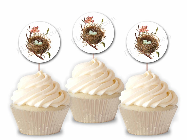 Bird Nest Cupcake Toppers Flowers Party or Food Picks Set image 0