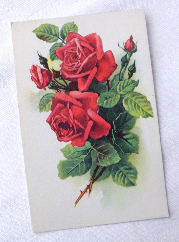 Red Rose Card Flower Birthday Vintage