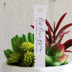 Let Love Grow Succulent Tag | Succulent Stakes | Wedding Favors | Bridal Shower Favor | Plant Stakes | Succulent Favor | Favor Tags (S007)