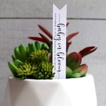 Baby In Bloom Succulent Tags | Succulent Stake | Baby Shower Favors | Baby Sprinkle Favors | Favor Tags | Gift Tags | Succulent Favor (S001)