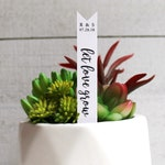 Let Love Grow Succulent Tag | Succulent Stakes | Wedding Favors | Bridal Shower Favor | Plant Stakes | Succulent Favor | Favor Tags (S003)