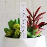 Let Love Grow Succulent Tag | Succulent Stakes | Wedding Favors | Bridal Shower Favor | Plant Stakes | Succulent Favor | Favor Tags (S009)