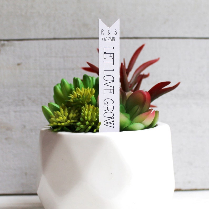 Let Love Grow Succulent Tag  Succulent Stakes  Wedding image 0