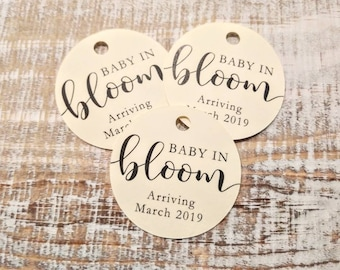Baby In Bloom Tags | Succulent Tags | Baby Shower Favors | Plant Favors | Plant Tags | Succulent Favors | Favor Tags (018)