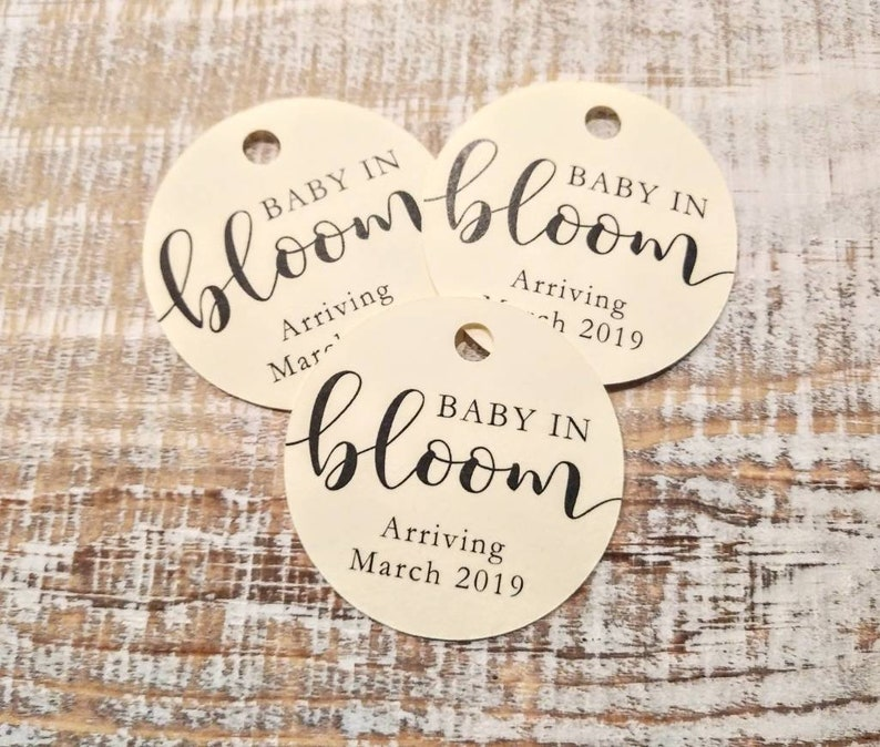 Baby In Bloom Tags  Succulent Tags  Baby Shower Favors  image 0