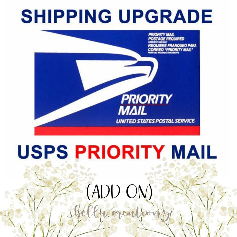 PRIORITY MAIL  UPGRADE  add on to exsisting order. Shipping image 0