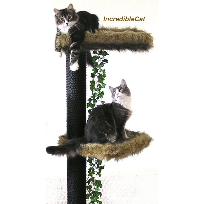 4/' High Steamboat CAT TREE FURNITURE Custom Steamboat 4F1C1L Sphynx Cats Midcentury Modern Furniture Hairless Cats Luxury Cat Bed