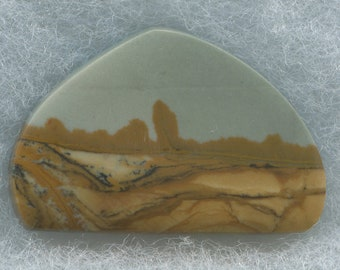 Scenic Gem Owyhee Designer Cabochon from Eastern Oregon