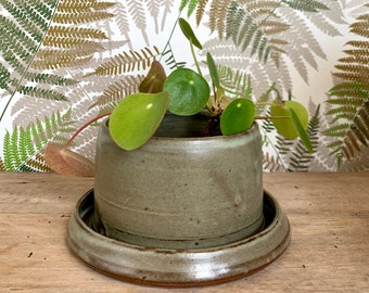 Ceramic Planter with Built-in Drainage Tray/ Green / Succulent Flower Pot