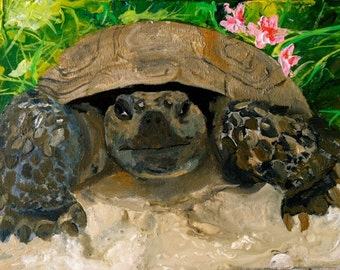 Romeo the Gopher Tortoise by Jenny Pollard