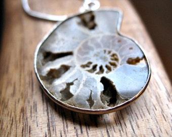 ammonite necklace in sterling silver. paleontology prehistoric necklace. splurge.