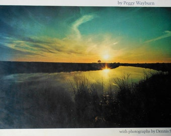 70s Edge of Life The World Of The Estuary Peggy Wayburn photography Dennis Stock Sierra Club illustrated nature environmental science book