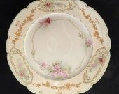 Limoges Plate W G Co. Limoges France Hand Painted Cabinet Plate Vintage Antique 9 1 2 Inch Plate