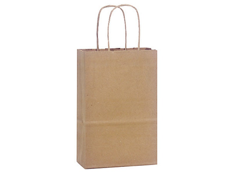 12 Small Kraft Paper Gift Bags Kraft Gift Bags With Handles Etsy