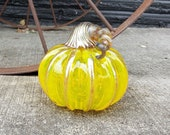 "Bright Yellow Transparent, 4"" Blown Glass Pumpkin, Decorative Gourd Sculpture with Dark Gold Ribs and Stem, By Avalon Glassworks"