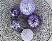 Purple Float & Sea Life S...
