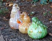 Curly Stem Glass Gourds, ...