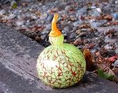 """Gooseneck Gourd, 7"""" ..."""