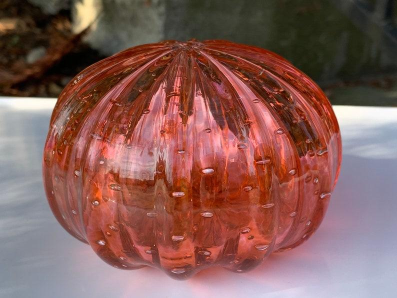 Sea Urchin Shell Sculpture 4 Decorative Coral Peach image 0