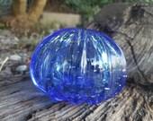 Blue Sea Urchin Shell Scu...
