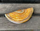 """Glass Razor Clam, Decorative 4.5"""" Hand Blown Sea Shell Sculpture, Northwest Delicacy, Sea Shore Decor Sea Life Clamshell, Avalon Glassworks"""