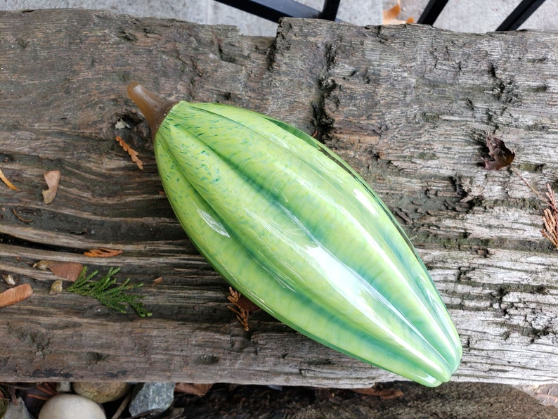 Green Glass Cocoa Pod 9 Long Bright with Brown Stem image 0