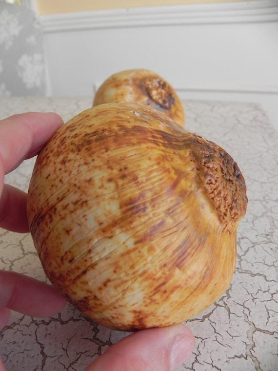 1 porcelain brown onion faux food super realistic sculpture photo stylist