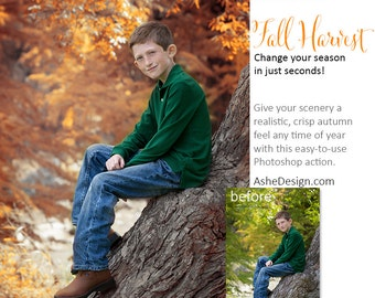 Photoshop Action | Fall Harvest - Photography Editing Made Easy With This One (atn) Action to Install on Your Computer.