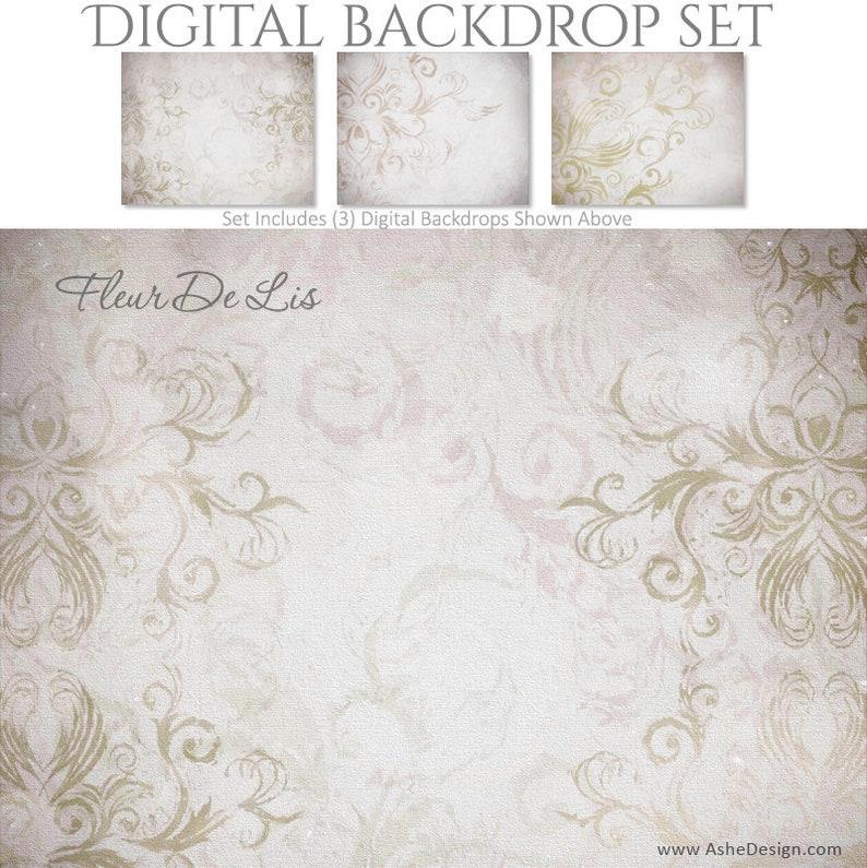 3 DIGITAL Photography Backdrop Set 16x20 Large Backdrops for Scrap Bookers and Photographers. Fleur De Lis -