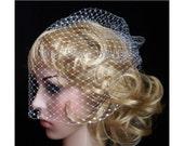 SNOW WHITE  full Bridal Weding veil Rusian Net Birdcage Veil with  Crystal Edge