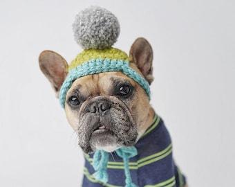 Dog beanie with pom pom / dog hat / crocheted dog hat / dog gift