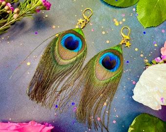 Hera's Feather Earrings ~ Anita Apothecary, Peacock feather earrings, Feather earrings, festival earrings, real feather earrings, Peacocks
