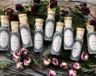 Single Kitchen Witchery Herbs + Spices ~ Kitchen witch, witch herbs, witchcraft herbs, herb set, hedgewitch, Anita Apothecary