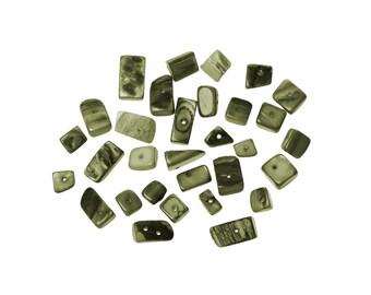 40 sea shell beads, Irregular, grey and green, various size