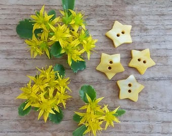 Mother of Pearl Shell Buttons 15mm - set of 6 yellow star buttons