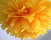 MARIGOLD tissue paper pompom fiesta wedding decorations circus carnival first birthday party golden yellow grad coco dia los muertos Purim