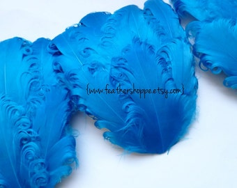 LOT OF 5 Reduced Clearance 2.85 ea Imperfect Turquoise Curled Goose Feather Pads