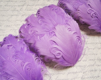 CLEARANCE - Imperfect Lavender Purple Curled Goose Pads - 2.75 ea
