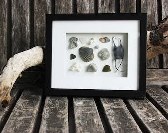Mermaid Purse with Sea Shells and Sea Life Framed Gift, Coral Pieces, Gray Sea Theme, Coastal Gift, Beach Box, Coastal Gift, Beach Finds