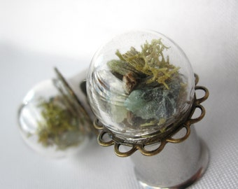 """Pair of Real Emerald, Lavender, and Moss Statement Plugs - Terrarium Gauges - 4g, 2g, 0g, 00g, 7/16"""", 1/2"""", 9/16"""", 5/8"""", 3/4"""", 7/8"""", 1"""""""
